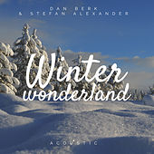 Winter Wonderland (Acoustic) de Dan Berk