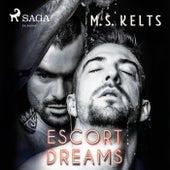 Escort Dreams - Dreams-Reihe 1 (Ungekürzt) von M. S. Kelts