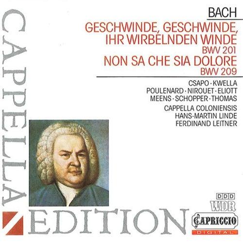 Bach: Geschwinde, ihr wirbelnden Winde by Various Artists