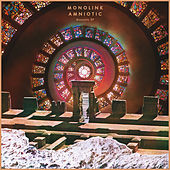Amniotic Acoustic EP by Monolink