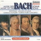 Bach Sons (The) – Bach, J.C.F. / Bach, W.F. / Bach, C.P.E. / Bach, J.C. von Various Artists