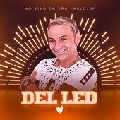 Ao Vivo em São Paulo/SP (Ao Vivo) de Del Led