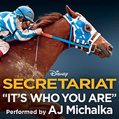 It's Who You Are by AJ Michalka