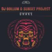 Shake von DJ Gollum