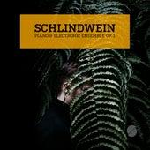 Piano & Electronic Ensemble Op. 1 von Schlindwein