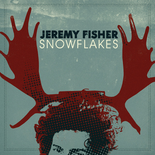 Snowflakes by Jeremy Fisher