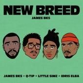 New Breed (feat. Q-Tip, Idris Elba & Little Simz) von James BKS
