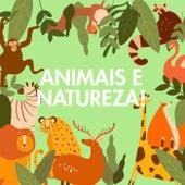 Animais e Natureza! di Various Artists