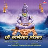 Shri Marleshwar Hareshwar by Ashok Waingankar