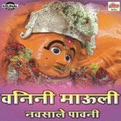 Vanini Mauli Navsale Pavni by Ashok Waingankar