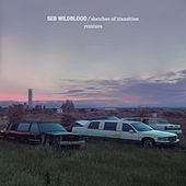 sketches of transition (Remixes) by Seb Wildblood
