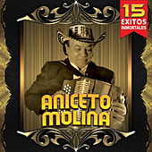 15 Exitos Inmortales by Aniceto Molina