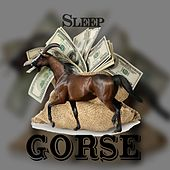Gorse by Sleep