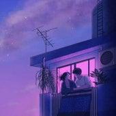 Violets de NAV
