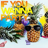 If You Wanna Party de Various Artists