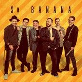 Mono 2020 de Sr. Banana