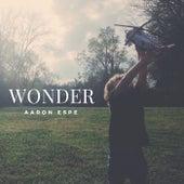 Wonder de Aaron Espe
