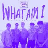 What Am I (Casualkimono Remix) di Why Don't We