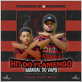 Hit do Flamengo - Manual do Vapo van Thiaguinho MT