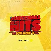 Dancehall Hits, Vol. 1 de Various Artists