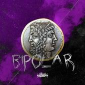 Bipolar de Bonde R300