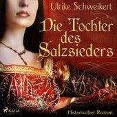 Die Tochter des Salzsieders (Ungekürzt) von Ulrike Schweikert