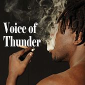 Voice Of Thunder by Various Artists