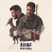 Avine em Sampa (Ao Vivo) by Avine Vinny