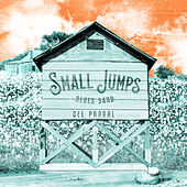 Del Parral (Live Session) by Small Jumps Blues Band
