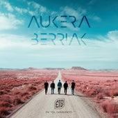 Aukera Berriak by En Tol Sarmiento