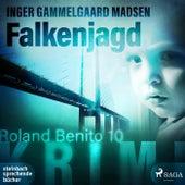 Falkenjagd - Roland Benito 10 (Ungekürzt) von Inger Gammelgaard Madsen