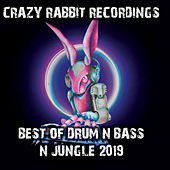 Best of Drum & Bass and Jungle 2019 by Various Artists