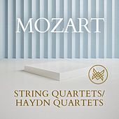 Mozart: String Quartets/Haydn Quartets by Various Artists