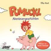Pumuckl - Abenteuergeschichten (ungekürzt) von Ellis Kaut