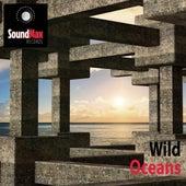 Oceans von Wild