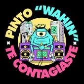 Te Contagiaste by Pinto