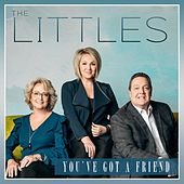 You've Got a Friend by Littles