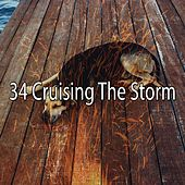 34 Cruising the Storm by Rain Sounds and White Noise