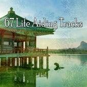 67 Life Aiding Tracks de Meditación Música Ambiente