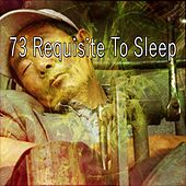 73 Requisite to Sleep by Baby Sweet Dream (1)