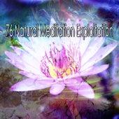 76 Natural Meditation Exploitation de Meditación Música Ambiente