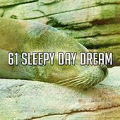 61 Sleepy Day Dream by Deep Sleep Music Academy