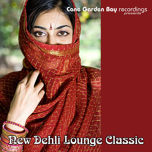 New Dehli Lounge Classic by Various Artists
