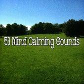 53 Mind Calming Sounds von Music For Meditation