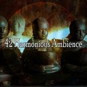 42 Harmonious Ambience de Zen Meditate