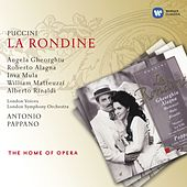 Puccini: La Rondine von Various Artists