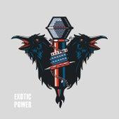 Exotic Power de Various Artists