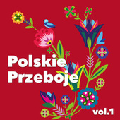 Polskie Przeboje vol. 1 van Various Artists