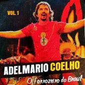 O Forrozeiro do Brasil (Vol. 1) de Adelmario Coelho