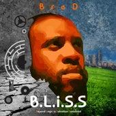 B.L.I.S.S by Brad